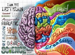 hemisferioscerebrales1