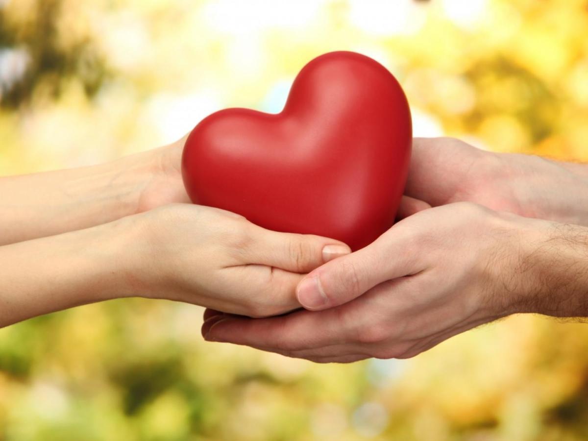Cabeza, corazón y manos...